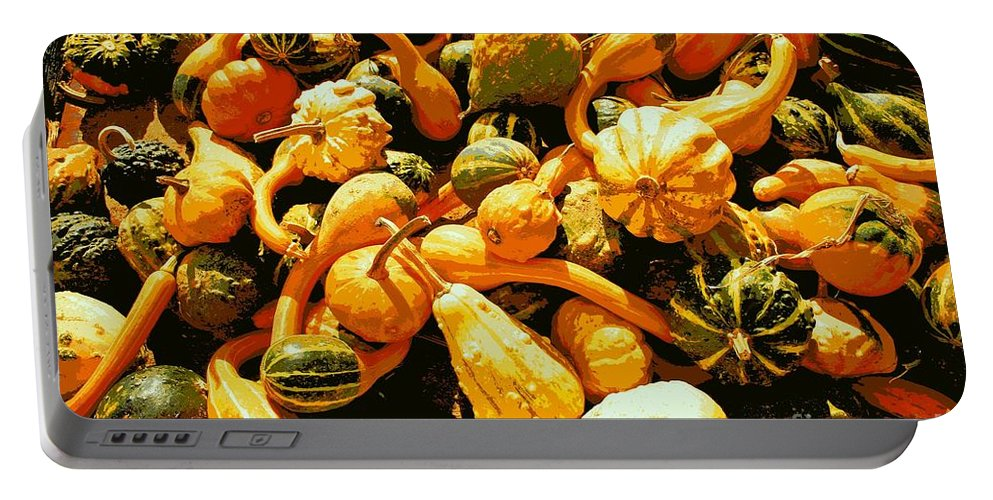 Gourds Portable Battery Charger featuring the photograph Out Of My Gourd by Beth Ferris Sale