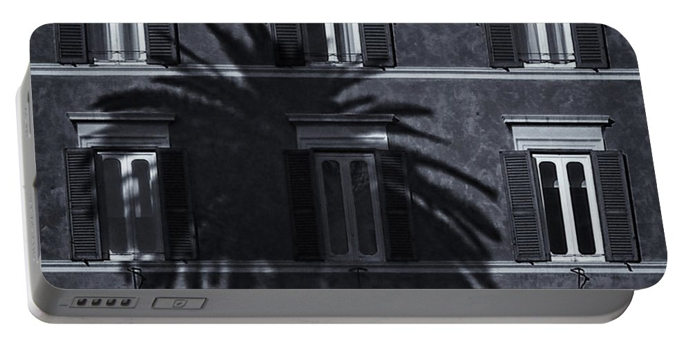 Palm Portable Battery Charger featuring the photograph Palm Tree by David Pringle