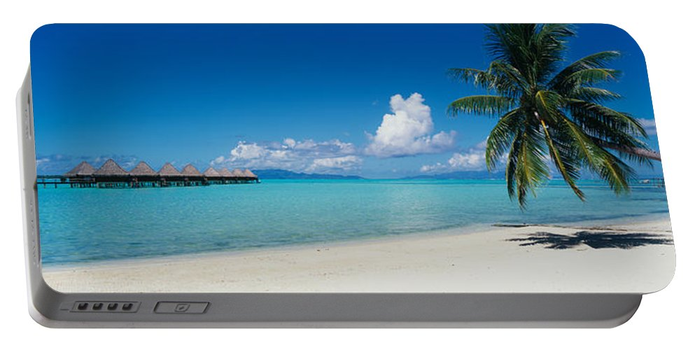 Photography Portable Battery Charger featuring the photograph Palm Tree On The Beach, Moana Beach by Panoramic Images