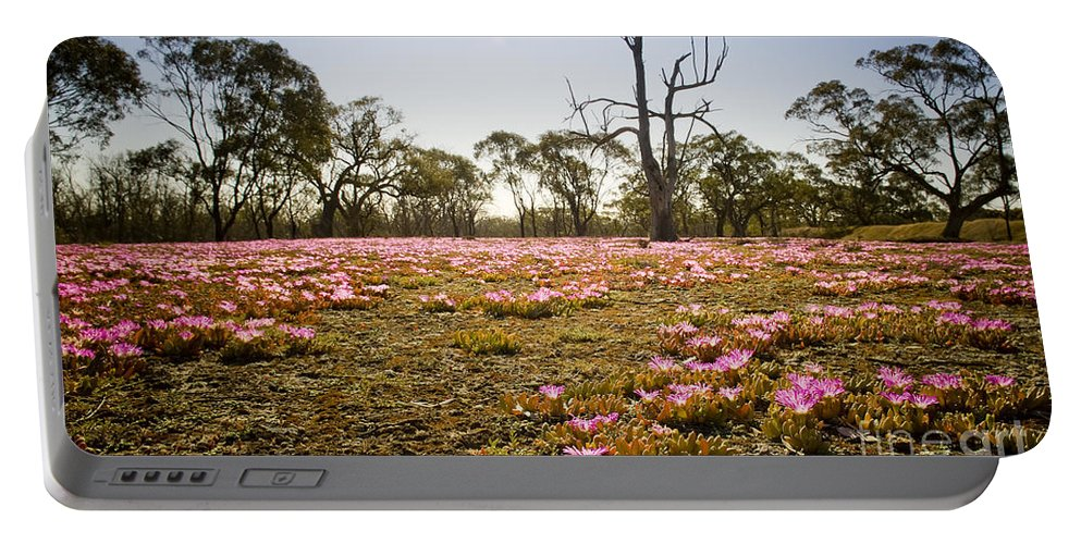 Flora Portable Battery Charger featuring the photograph Pink Wildflowers by Tim Hester