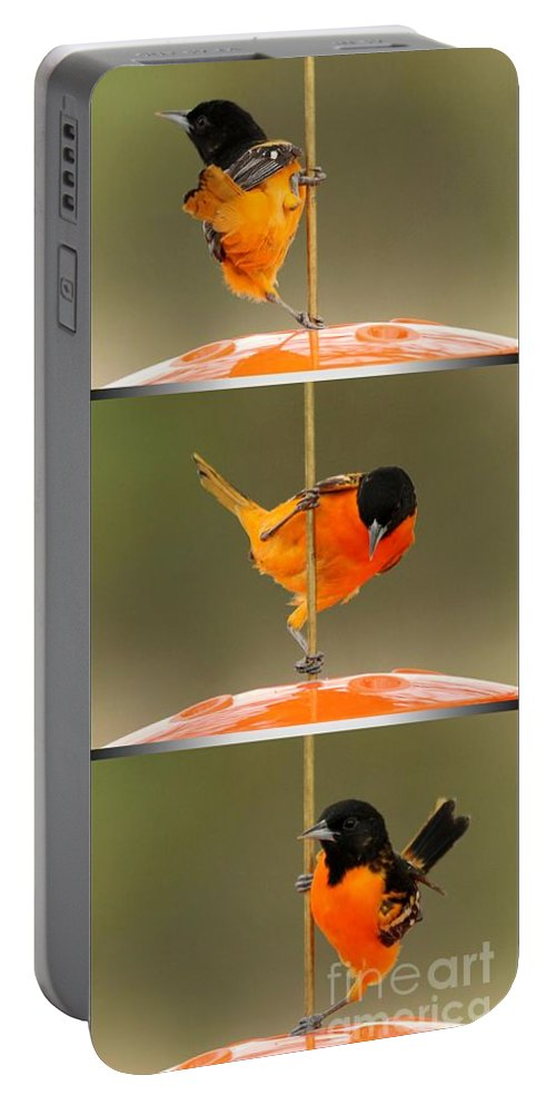 Mccombie Portable Battery Charger featuring the photograph Pole Dancer by J McCombie