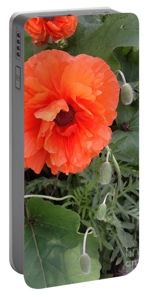 Flower Portable Battery Charger featuring the photograph Poppy by Joseph Yarbrough