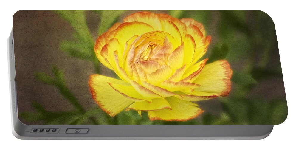 Ranunculus Portable Battery Charger featuring the digital art Ranunculus by Claudia Kuhn
