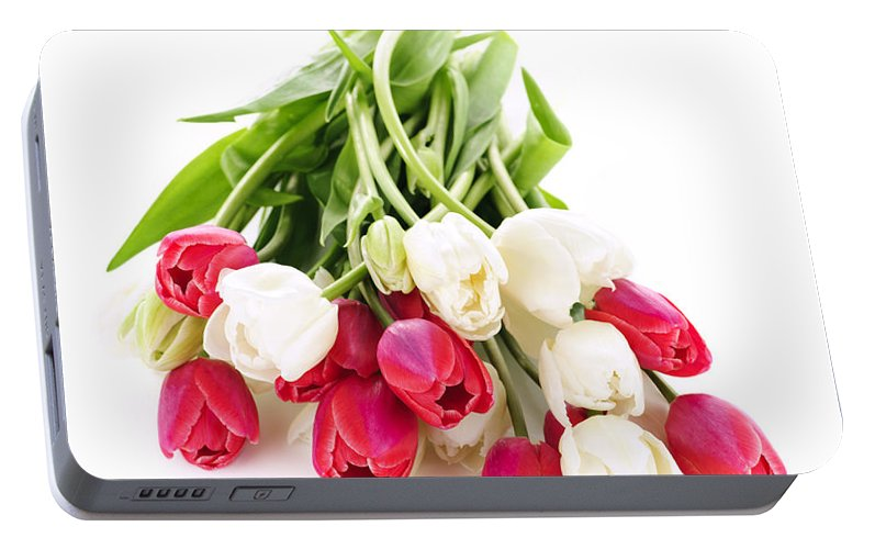 Tulips Portable Battery Charger featuring the photograph Red And White Tulips by Elena Elisseeva