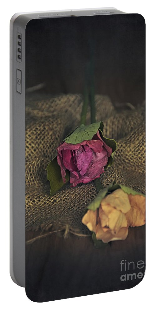 Anniversary Portable Battery Charger featuring the photograph Roses by Svetlana Sewell
