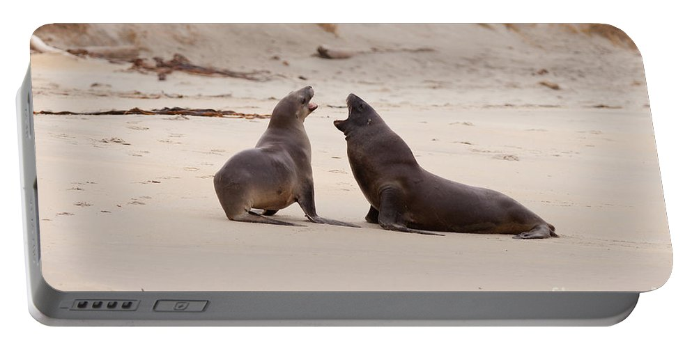 South Island Portable Battery Charger featuring the photograph Rough Courtship Of Male And Female Hookers Sealions by Stephan Pietzko