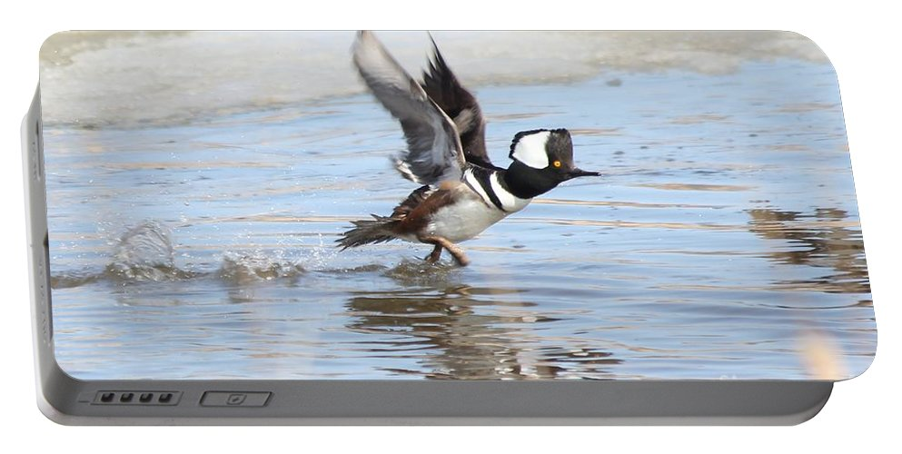 Hodded Portable Battery Charger featuring the photograph Running On The Water by Lori Tordsen