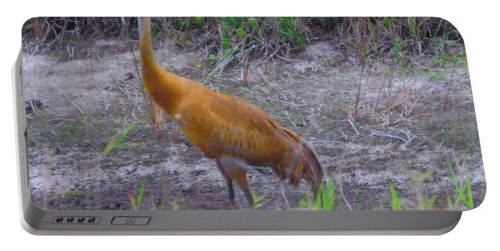 On Watch Portable Battery Charger featuring the photograph Sandhill Crane by Robert Floyd