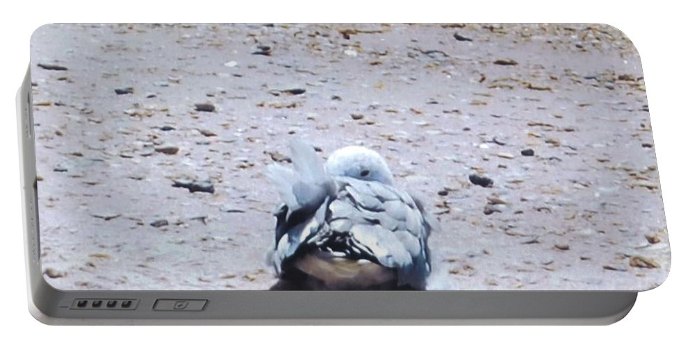 I'm Watching You. Portable Battery Charger featuring the photograph Seagull by Robert Floyd
