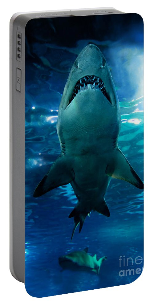 Sea Portable Battery Charger featuring the photograph Shark Silhouette Underwater by Michal Bednarek
