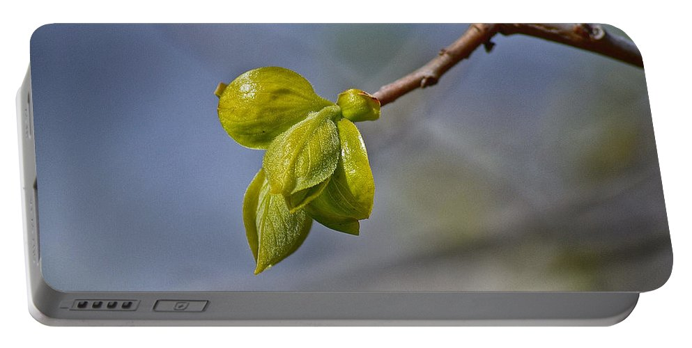 Spring Portable Battery Charger featuring the photograph Spring Is Coming by Bill Owen
