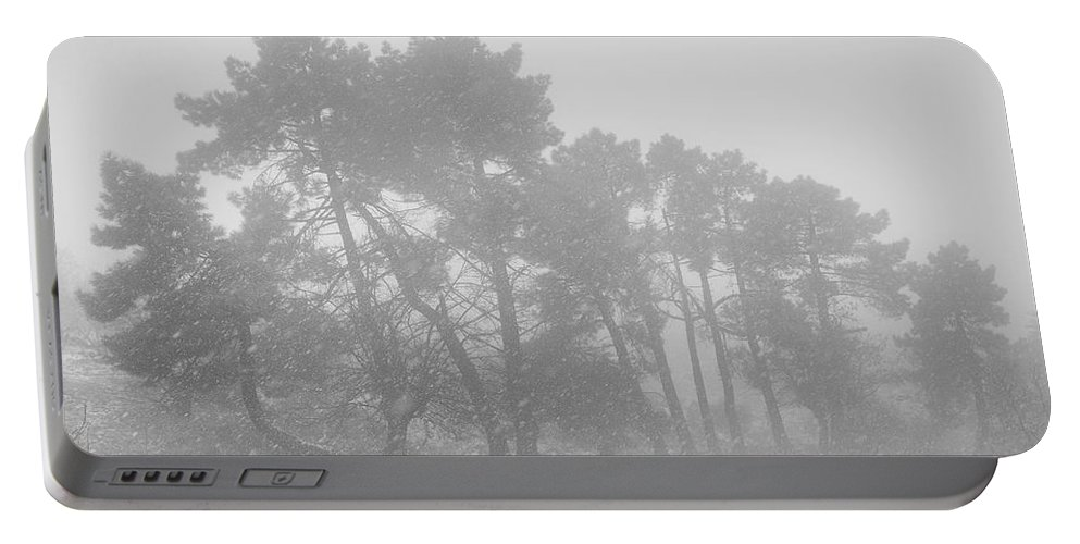 Black And White Portable Battery Charger featuring the photograph Spring Snowstorm by Guido Montanes Castillo