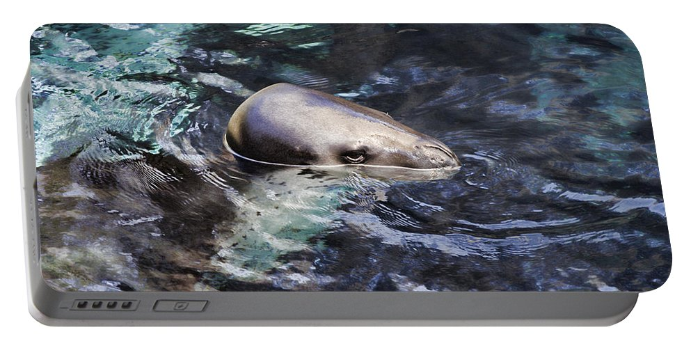 Leopard Seal Portable Battery Charger featuring the photograph Stealth by Douglas Barnard