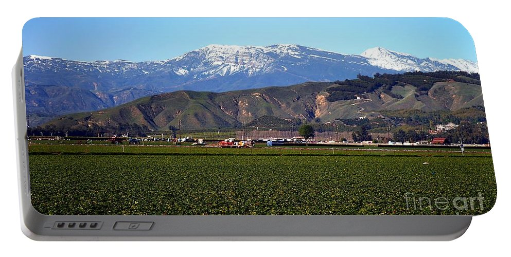 Agriculture Portable Battery Charger featuring the photograph Strawberry Field by Henrik Lehnerer