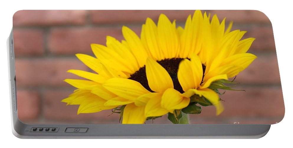 Nature Portable Battery Charger featuring the photograph Sunflower by Henrik Lehnerer