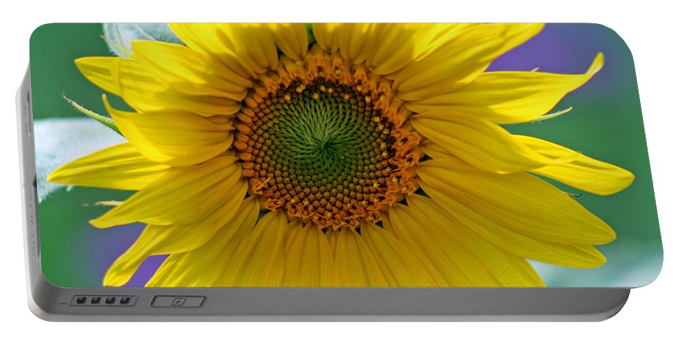 Sunflower Portable Battery Charger featuring the photograph Sunflower by Karen Adams