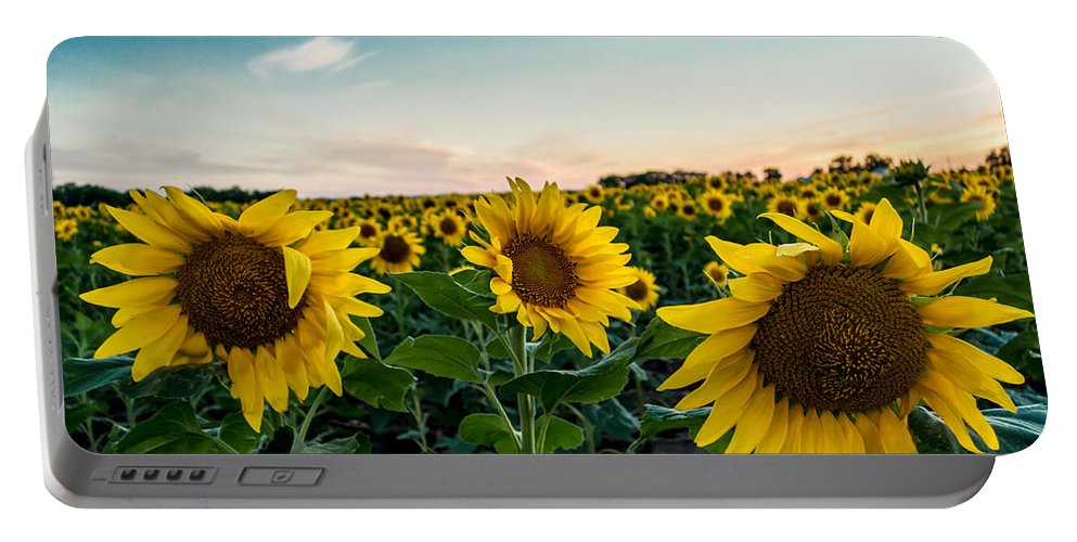 Blooming Portable Battery Charger featuring the photograph Sister Sunflowers by Melinda Ledsome