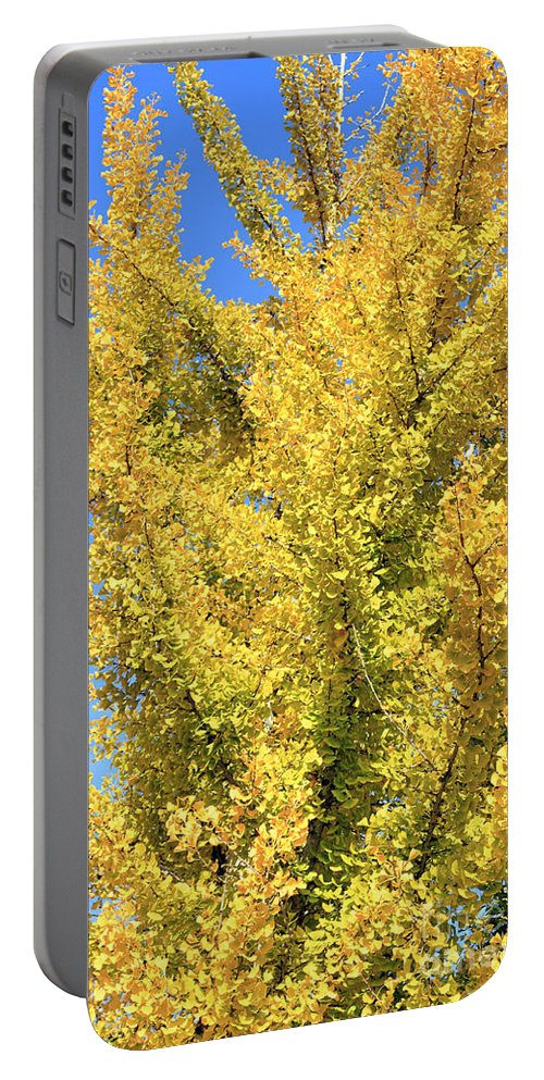 Ginkgo Portable Battery Charger featuring the photograph Tall Ginkgo Tree by Lee Serenethos