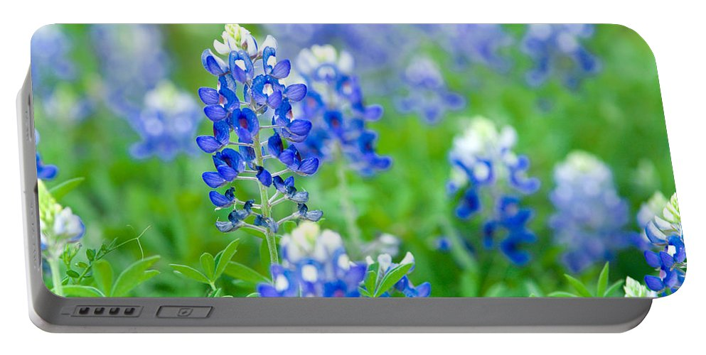 Bluebonnets Portable Battery Charger featuring the photograph Texas Bluebonnets by Rospotte Photography