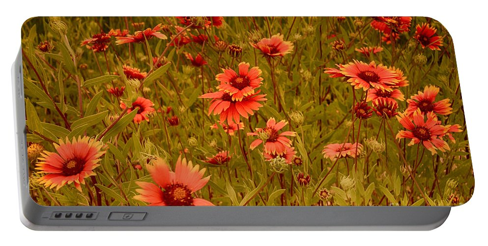 Wildflowers Portable Battery Charger featuring the photograph Texas Wildflowers V5 by Douglas Barnard