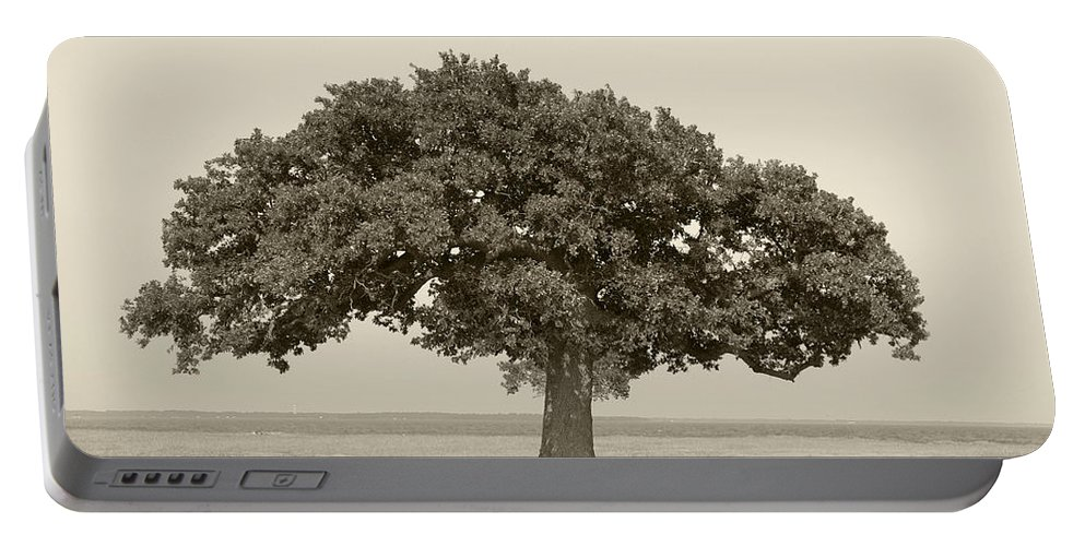 Tree Portable Battery Charger featuring the photograph The Lonely Tree by Charles Beeler
