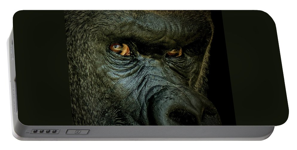 Animals Portable Battery Charger featuring the photograph The Look by Ernie Echols