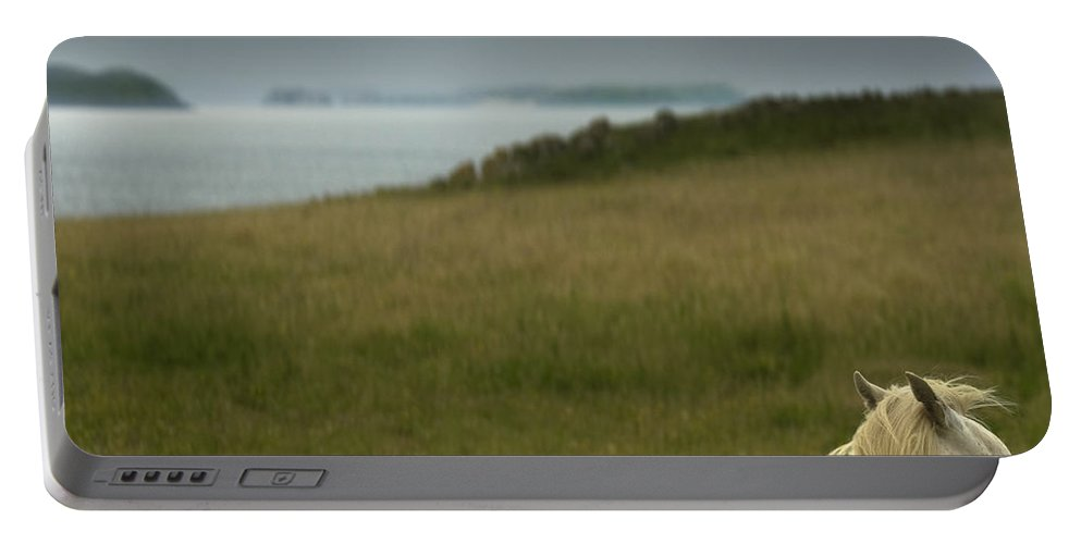 Welsh Pony Portable Battery Charger featuring the photograph The Welsh Pony by Angel Ciesniarska