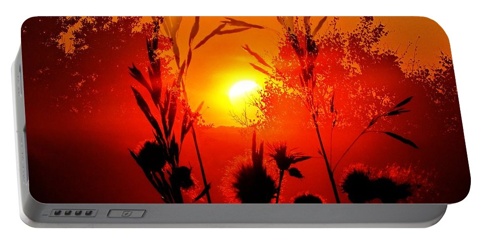 Blended Image Portable Battery Charger featuring the digital art Thistles In The Sunset by Andrea Lawrence