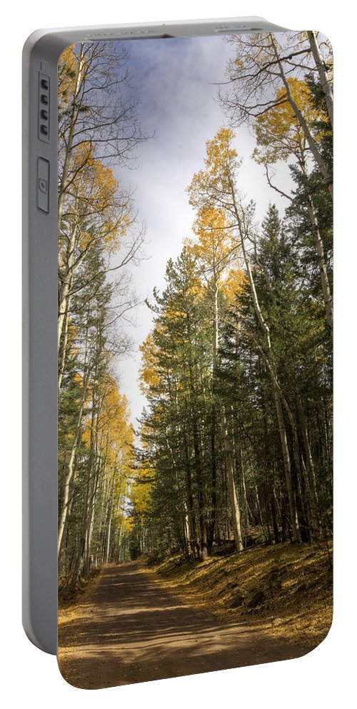 Fall Foliage Portable Battery Charger featuring the photograph A Path Through The Woods by Saija Lehtonen