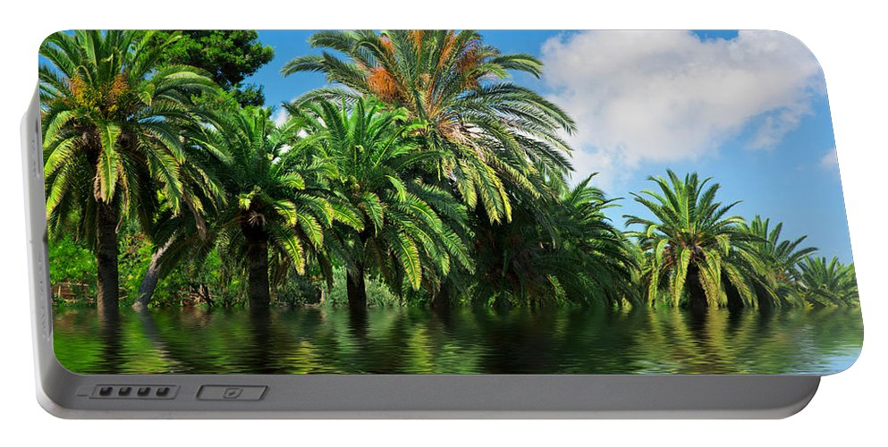 Jungle Portable Battery Charger featuring the photograph Tropical Exotic Jungle And Water by Michal Bednarek