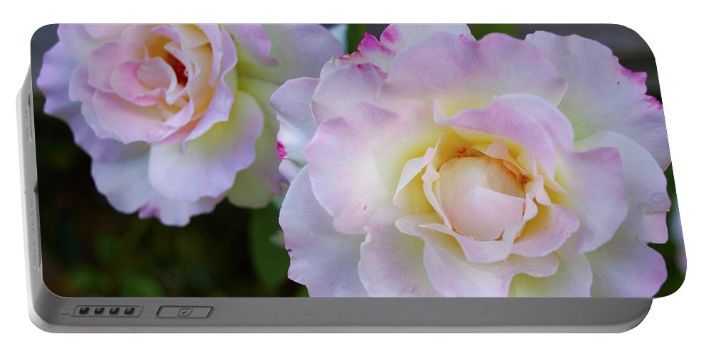 Two Pink Roses Portable Battery Charger featuring the digital art Two White Roses by Floyd Snyder