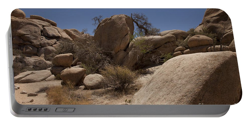joshua Tree joshua Tree National Park Portable Battery Charger featuring the photograph Waiting by Amanda Barcon