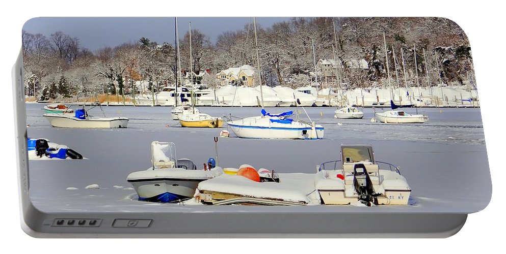 Nature Portable Battery Charger featuring the photograph Waiting For Spring by Ed Weidman