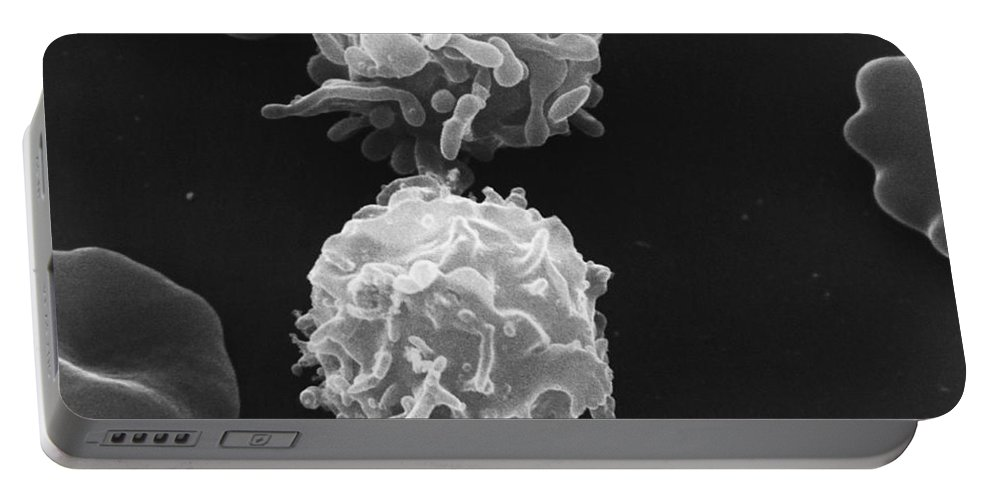 Science Portable Battery Charger featuring the photograph White Blood Cells Sem by David M. Phillips