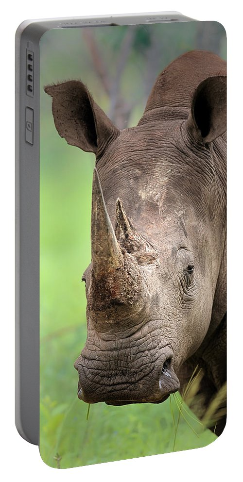 Square-lipped Portable Battery Charger featuring the photograph White Rhinoceros by Johan Swanepoel