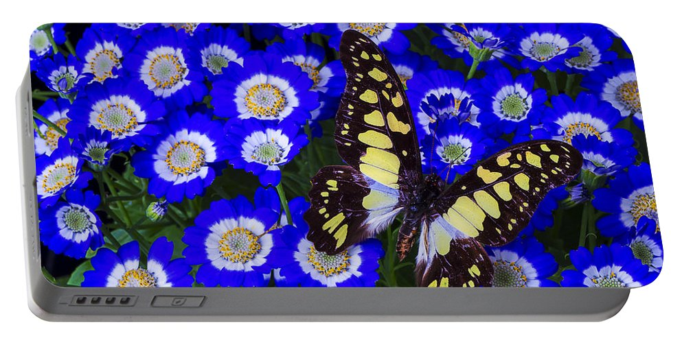 Blue Portable Battery Charger featuring the photograph Yellow And Black Butterfly by Garry Gay
