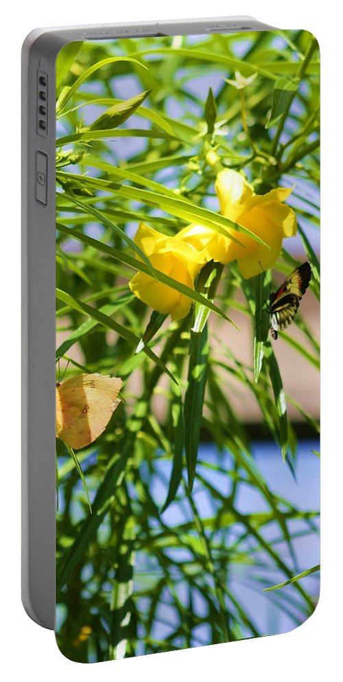 Moth Portable Battery Charger featuring the photograph Yellow by Chuck Hicks