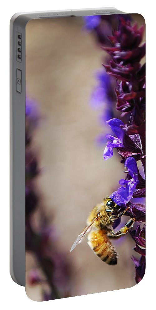 Becky Furgason Portable Battery Charger featuring the photograph #theworldisalliam by Becky Furgason