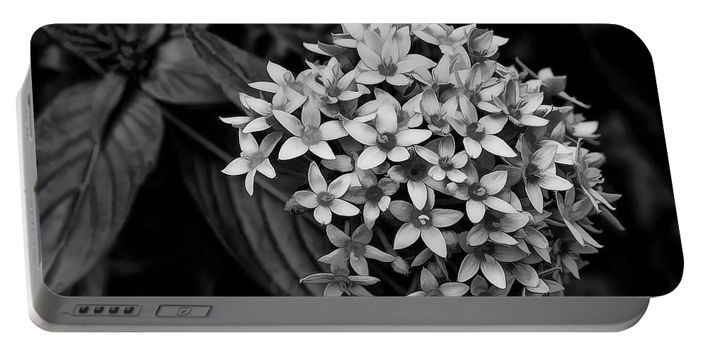 Flower Portable Battery Charger featuring the photograph Delicate by Joyce Baldassarre