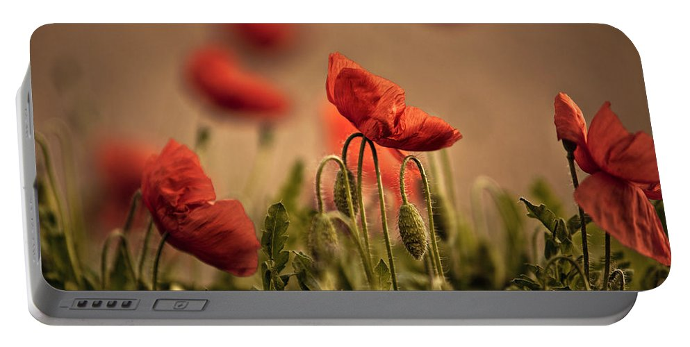 Poppy Portable Battery Charger featuring the photograph Summer Poppy by Nailia Schwarz