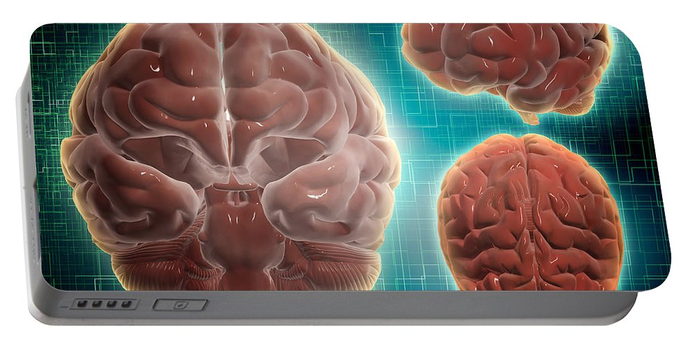 Horizontal Portable Battery Charger featuring the digital art Conceptual Image Of Human Brain by Stocktrek Images
