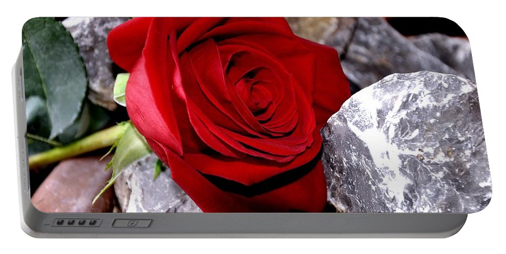 Flower Portable Battery Charger featuring the photograph Red Rose by FL collection