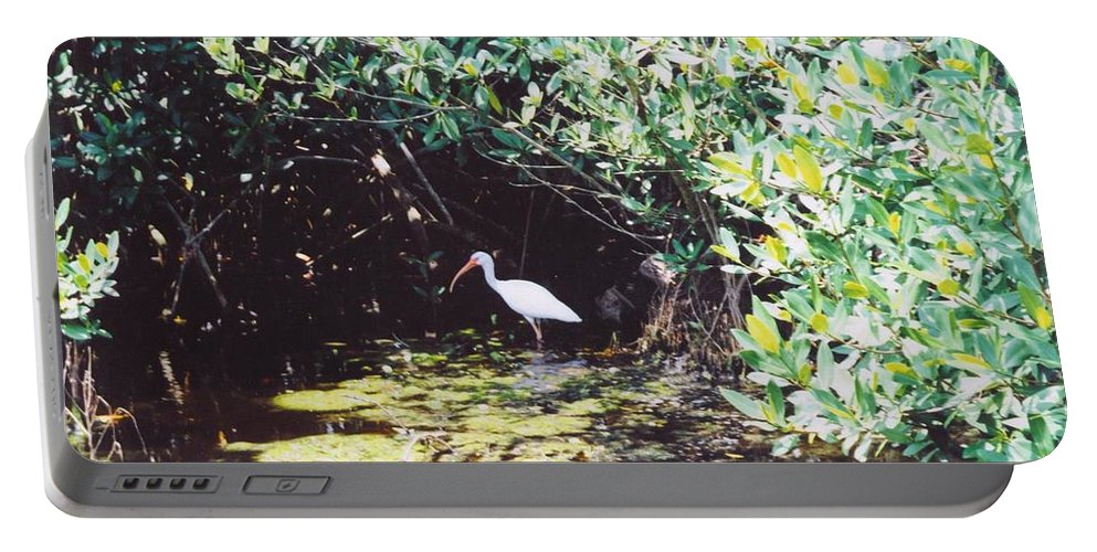 Matlache Portable Battery Charger featuring the photograph White Ibis by Robert Floyd