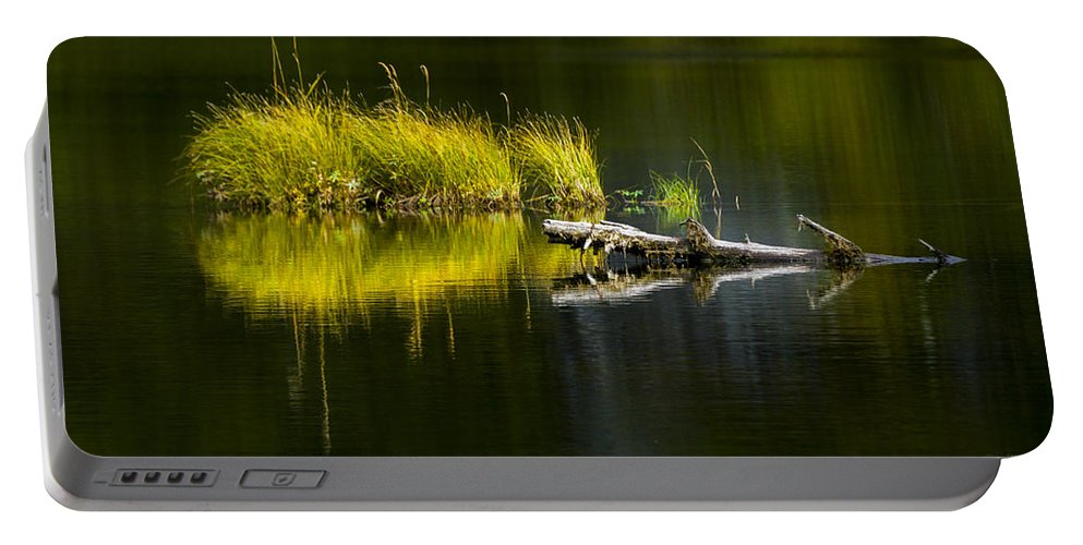 Priest Lake Portable Battery Charger featuring the photograph 131005b-029 Forest Pond 2 by Albert Seger