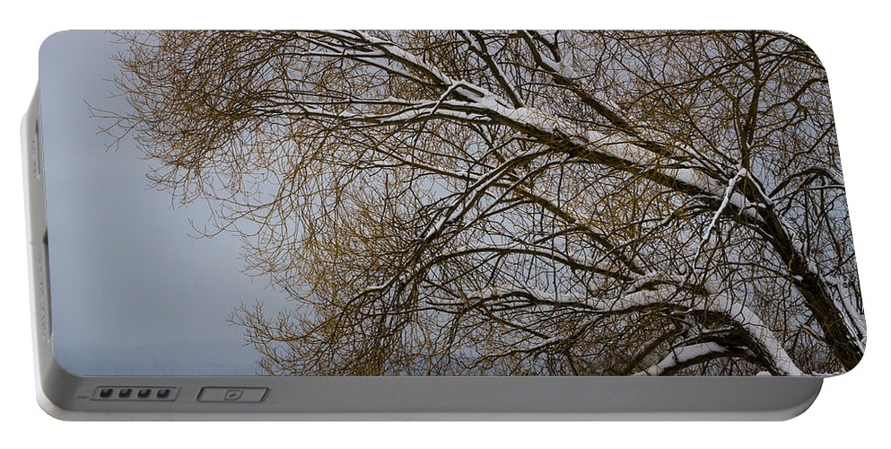 Recreation Portable Battery Charger featuring the photograph 140303a-13 Winter Color by Albert Seger