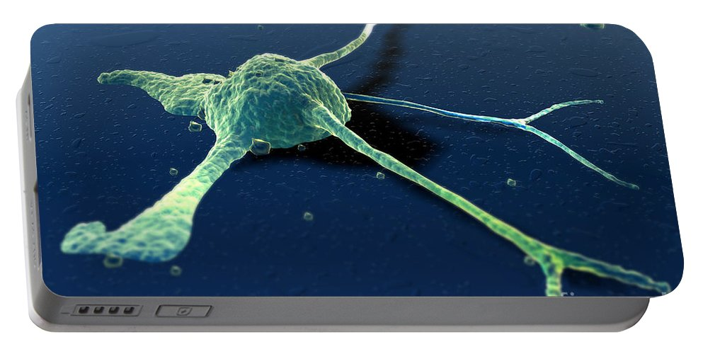 Digitally Generated Image Portable Battery Charger featuring the photograph Cancer Cell by Science Picture Co