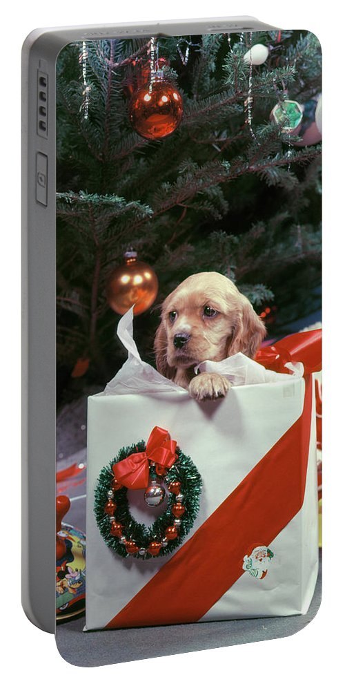 Photography Portable Battery Charger featuring the photograph 1950s Cocker Spaniel Puppy Dog Peeking by Animal Images