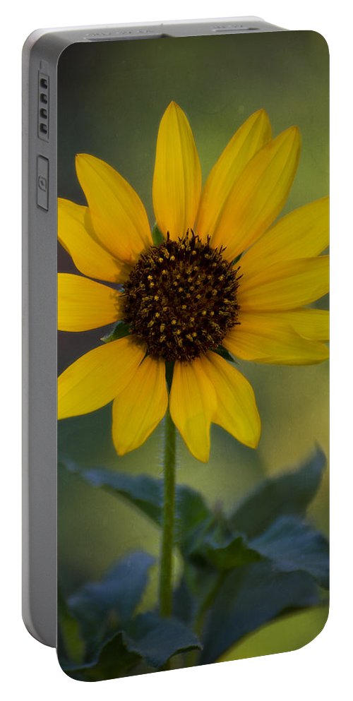 Sedona Portable Battery Charger featuring the photograph A Sunflower by Saija Lehtonen