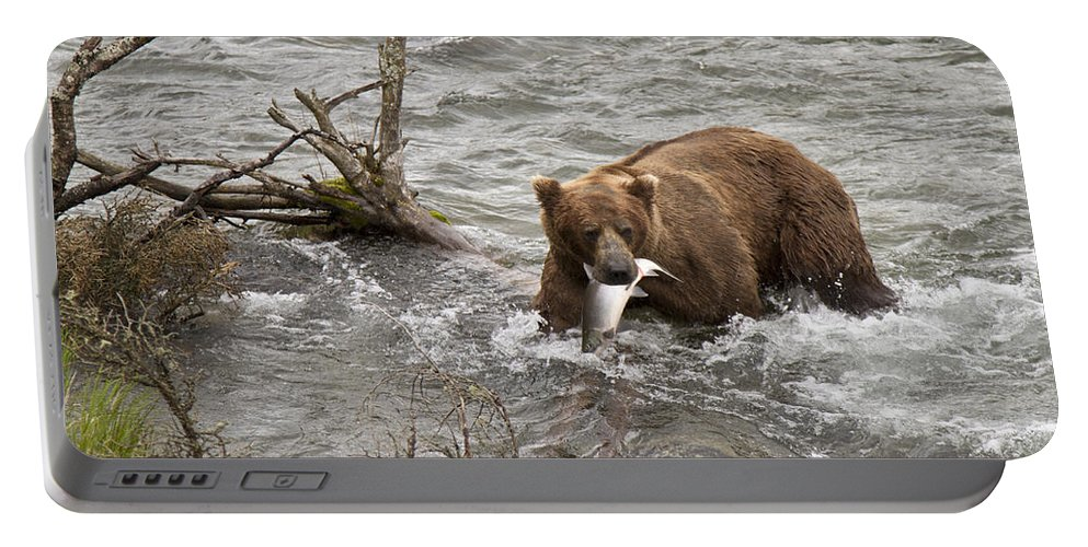 Alaska Portable Battery Charger featuring the photograph Alaskan Grizzly by Dee Carpenter