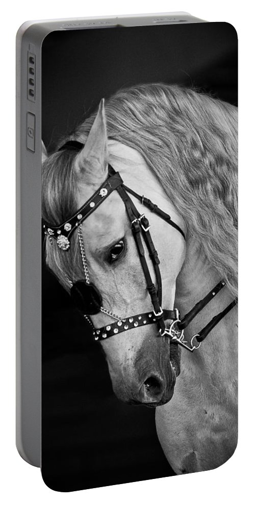 Andalusian Portable Battery Charger featuring the photograph Andalusian by Wes and Dotty Weber